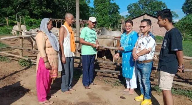 'राष्ट्रिय जनावरका गाई लोप हुँदै, संरक्षण र व्यवस्थापन गर्न आवश्यक '