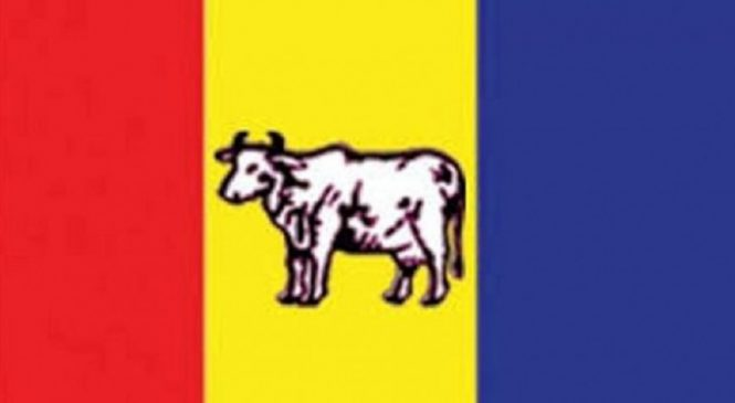 ५४ जिल्लामा राप्रपाको अधिवेशन सम्पन्न